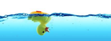 被淹没的鸭子-失败 库存照片