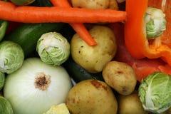 被清洗的五颜六色的新鲜蔬菜 免版税库存图片