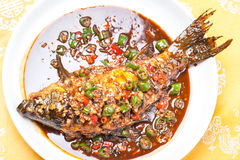 被炖的鲤鱼用辣椒和大蒜 库存照片
