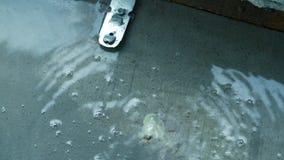 被炖的 楼板暖气下房子 管子起皱 股票视频