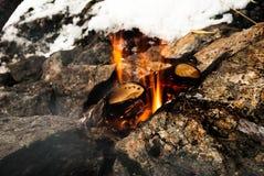 被点燃的火 库存照片