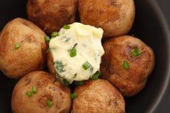 被烘烤的土豆化合物黄油草本长方形宝石麝香草迷迭香香菜牛至 库存照片