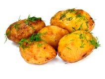 被烘烤的土豆用莳萝 免版税库存图片