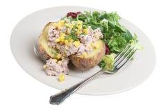 被烘烤的土豆金枪鱼 库存图片