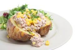 被烘烤的土豆金枪鱼 免版税库存照片