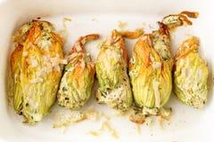 被烘烤的夏南瓜或绿皮胡瓜开花用在加州的帕尔马干酪 图库摄影