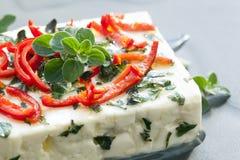 被烘烤的希腊白软干酪用牛至和辣椒 库存图片