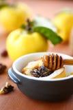 被烘烤的柑橘用核桃和蜂蜜 库存照片