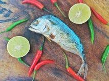 被烘烤的泰国鲭鱼用香料 库存图片
