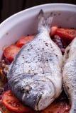 被烘烤的海鲷西班牙样式 免版税库存图片