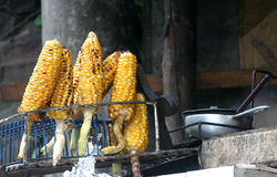 被烘烤的玉米elotes 图库摄影