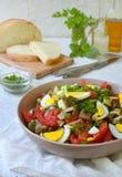 从被烘烤的茄子,葱,蕃茄,鸡蛋的沙拉,穿戴了与橄榄油和苹果醋在轻的背景 复制空间 库存图片