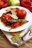 被烘烤的蔬菜 免版税库存图片