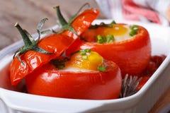 被烘烤的蕃茄鲜美开胃菜充塞用鸡蛋 免版税库存图片