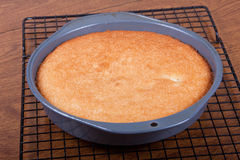 被烘烤的蛋糕 免版税库存图片