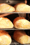 被烘烤的面包新近地 图库摄影