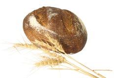 被烘烤的面包新鲜的大面包麦子 库存照片