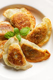 被烘烤的饺子用蘑菇和圆白菜填装了在白色板材 库存照片