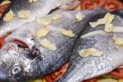 被烘烤的鱼 库存照片