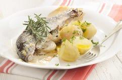 被烘烤的鳟鱼用土豆和迷迭香 库存图片
