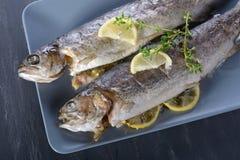 被烘烤的鳟鱼 免版税库存照片