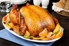 被烘烤的鸡用桔子 图库摄影