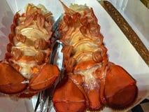 被烘烤的龙虾仁 免版税库存照片