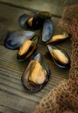 被烘烤的黑海淡菜 库存照片