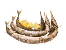 被烘烤的belone长嘴硬鳞鱼 免版税库存图片