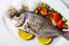 被烘烤的dorado鱼 免版税库存照片