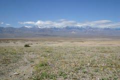 被烘的死亡沙漠洗刷谷 免版税库存照片