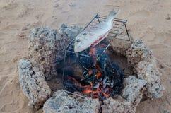 被烤在开放营火的新近地被抓的鱼在沙漠 免版税库存照片