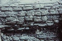 被烧焦的木头纹理  免版税库存图片