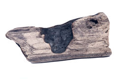 被烧焦的木头 免版税库存图片