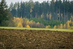 被烧焦的领域、绿色草甸和多彩多姿的森林在一个小村庄 免版税图库摄影
