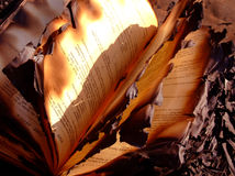 被烧的书 库存照片