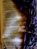 被烧的书 免版税库存图片