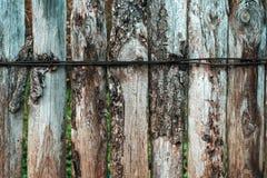 被烧的委员会 木背景 篱芭在一秋天天本质上 木老的板条 使用在背景的绿色叶子 免版税库存照片