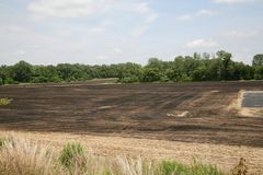 被烧的庄稼领域 库存图片