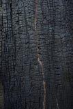 被烧的木纹理 库存照片