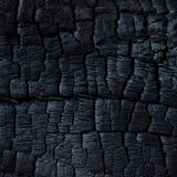被烧的木头 免版税图库摄影