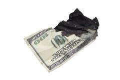 被烧的美元 免版税图库摄影
