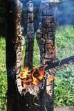 被烧的闷烧的树干 免版税库存照片