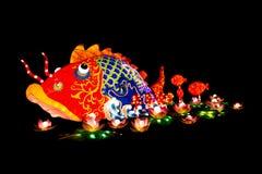 被照亮的中国鱼 免版税库存照片
