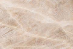 被照亮的切片大理石石华 水平的图象 温暖的镇静颜色 背景,类似玛瑙的条纹大理石纹理的美好的关闭 库存图片