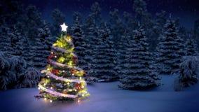 被照亮的圣诞树 皇族释放例证