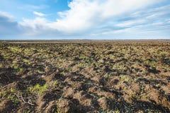 被犁的农业fileld在早期的春天 库存图片