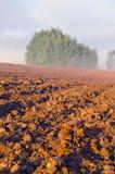 被犁的农田和早晨薄雾 免版税库存图片