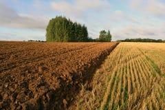 被犁的农田在秋天 图库摄影