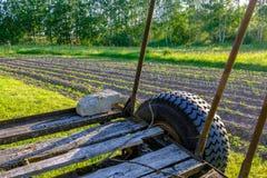被犁的土地的看法 从犁的犁沟 农业预习功课 免版税图库摄影